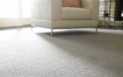 Can a Carpet Save You Money?