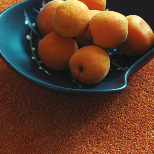 carpets north shields solar tangerine